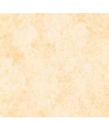 Carta tipo pergamena Marina Conchiglia A3+
