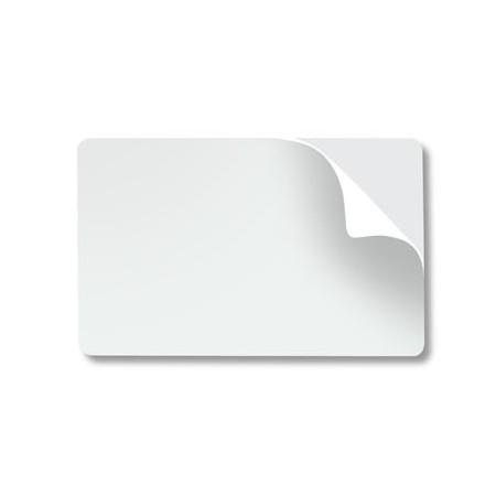 Fogli adesivi stampa laser in poliestere, trasparenti e colorati
